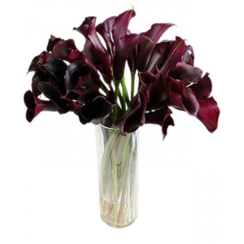 51 черная калла вазе