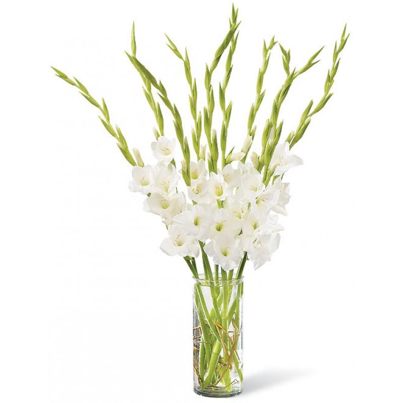 Белые гладиолусы в вазе
