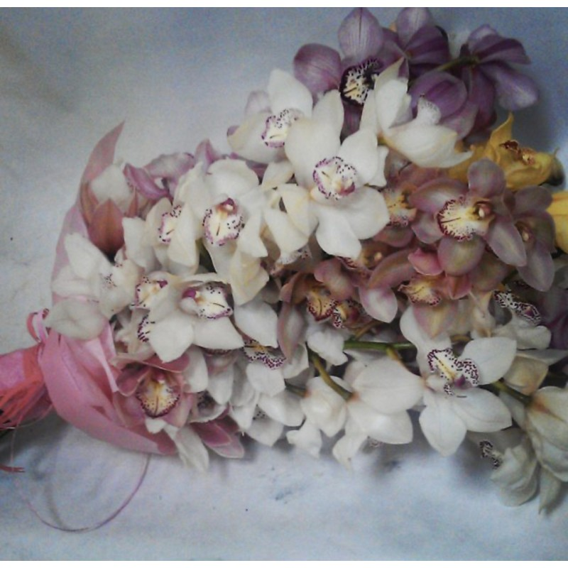 Микс из 7 орхидей