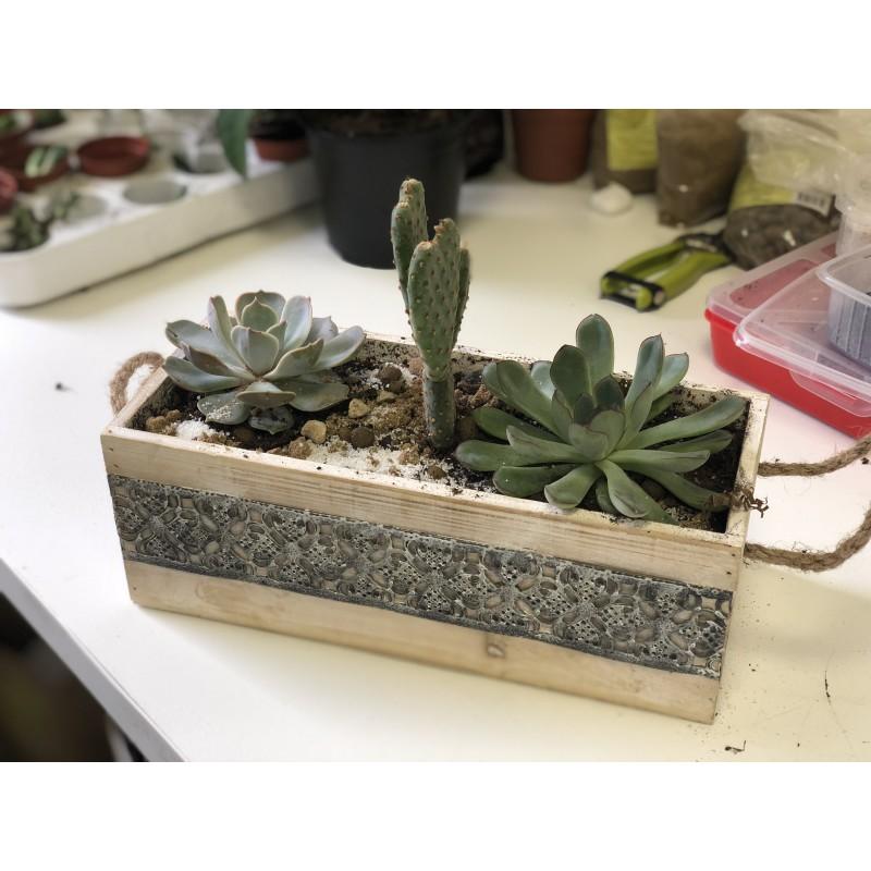 Ящик с друзьями